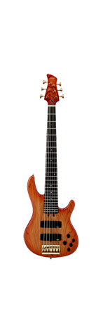 Six string bass guitar School